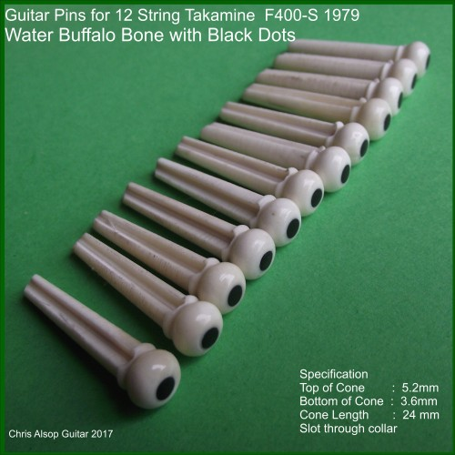 Takamine F400-s 12 String Guitar Pins