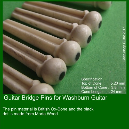 Washburn Guitar Pins in Bone